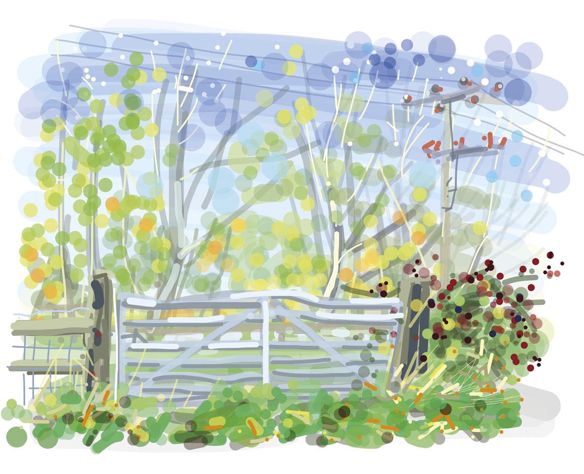 cotheridge-field-gate